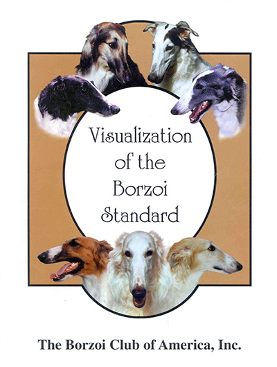 Visualization of the Borzoi breed standard booklet graphic