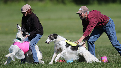 Lure Coursing Slip