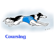 Three Borzoi coursing
